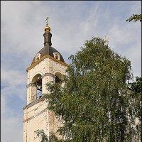 СНОВИЦЫ(3) :: Валерий Викторович РОГАНОВ-АРЫССКИЙ