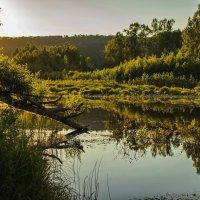 Старое русло реки и вечернее солнце... :: Альмира Юсупова