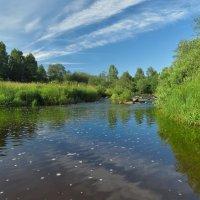Утром на реке :: Александр Смирнов