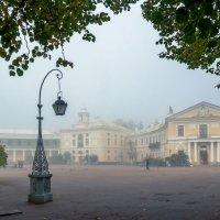 Дворец в тумане и фонарь :: Владимир Миронов
