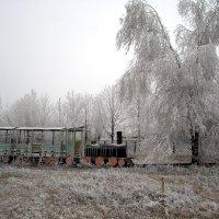Паровозик в снегу. :: Оля Богданович