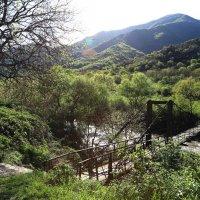 мостик на горной речкой :: Лидия кутузова