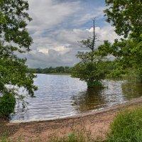 Озеро Рингсеон , Швеция :: Priv Arter