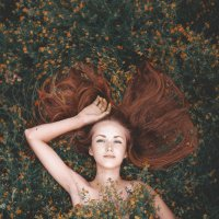 в летнем поле :: Юрий Ботвинов