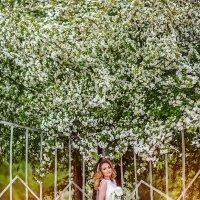 невеста и яблоня в цвету :: Екатерина Фалевская