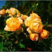 Розы Летнего сада :: Станислав Лебединский