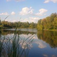 Озеро липовое  (озеро в облаках или облака в озере) :: марина ковшова