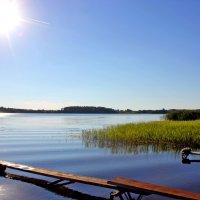 озеро Перхово :: Альберт Казачёк