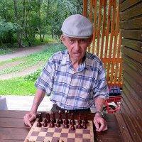Почему никто никогда не видел толстого шахматиста? Потому что шахматы – это спорт!) :: Ирина Крохмаль