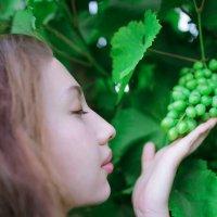 Аромат винограда :: Станислав Лазарев