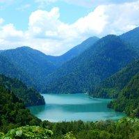 Озеро Рица :: Наталья
