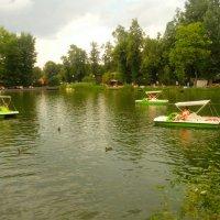 Голицынский пруд :: Павел Михалев