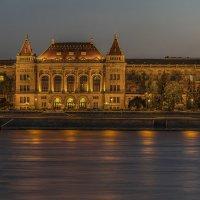 Будапештский университет :: Борис Гольдберг