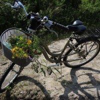 Натюрморт с велосипедом :: sv.kaschuk