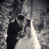 Ksenia & Alexandr, bw :: Валерий Славников