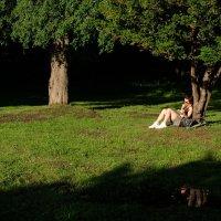 Летний вечер в городе :: Ирина Нефедова
