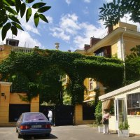 дом, обвитый виноградом :: Александр Корчемный