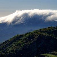 Gran Canaria :: Constantinus Zverev