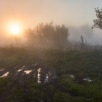 Мокрый восход :: Владимир Костылев