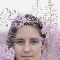 Girl - Summer :: Dmitry Ozersky