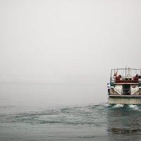 в тумане :: Ruslan Tsirulkevich
