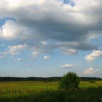 Небо и земля.. :: Антонина Гугаева