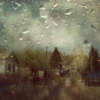 Дождливый день :: Людмила Фил