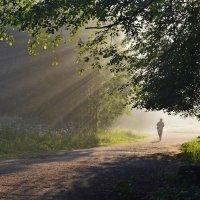К прогулкам в одиночестве пристрастье..... :: Юрий Цыплятников