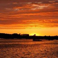 """Gulbju ezers...""""Лебединое озеро"""" :: Mari Kush"""