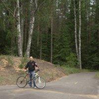 я на вело-фото-прогулке... :: Михаил Жуковский