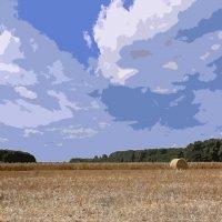 поле и небо. :: Alexander Andronik