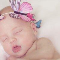 Сладкий сон :: Tatyana Smit