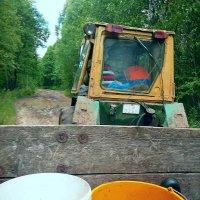 За лисичками - на тракторе! :: Vladimir Semenchukov