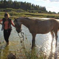 Купание буланого коня :: Мария
