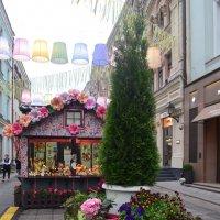 весна в городе :: Галина R...