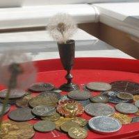 Одуванчики вспоминают прежние финансовые реинкарнации :: Алекс Аро Аро