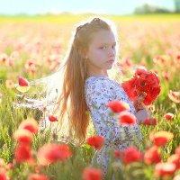 Маковое поле :: Екатерина Постонен