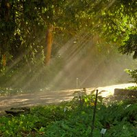 Солнце воздух и вода :: Alexander Andronik