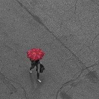 Красный зонт :: Марина Влади-на