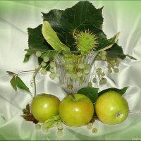 Зелёный натюрморт :: °•●Елена●•° Аникина♀