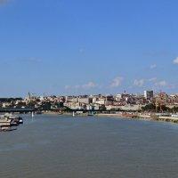 Река Сава :: Ольга