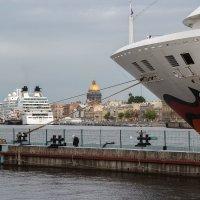 Заморские гости :: Евгений Никифоров