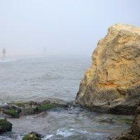 В тумане... :: Raisa Ivanova