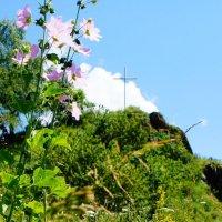Аксаутское ущелье, Кавказ :: Дарья :)