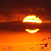 Солнце сейчас расплавится и стечет за горизонт :: Юлия Березина