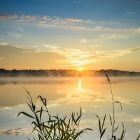 Истринское водохранилище рассвет :: Наталия Горюнова