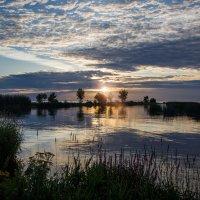 Финский залив... насладиться тишиной.. :: Светлана Салахетдинова