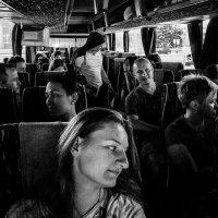 В автобусе :: Людмила Синицына