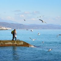 Любовь и море :: Елена Фомина