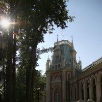 В Царицыно :: lady-viola2014 -